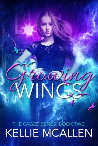wings of fire free ebook pdf